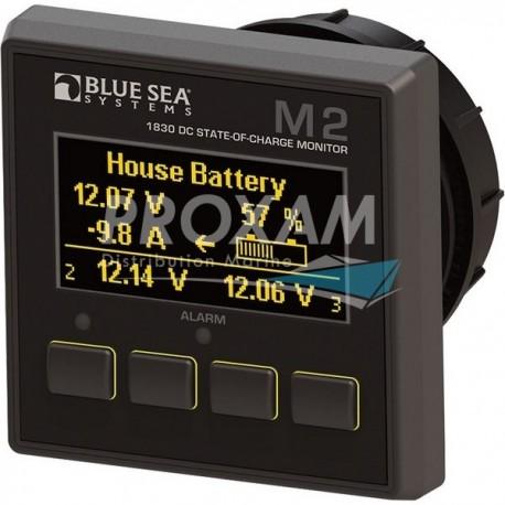 MONITEUR 12/24VDC 500A